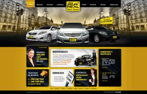 Taxi Company by Develoweb