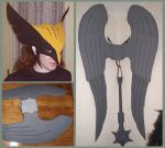 Hawkgirl Costume by CraftyWingy