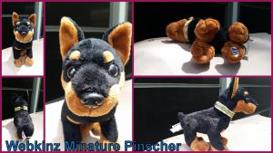 Webkinz Minature Pinscher by Vesperwolfy87