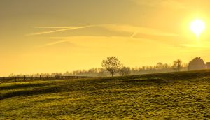 Golden hillside at dusk by atol