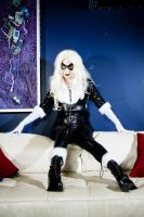 Black Cat 1 by Mistress-Zelda