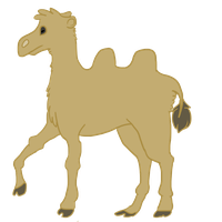 Camel. by Archerophio