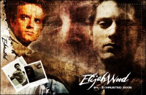 Elijah Wood by exhausted247