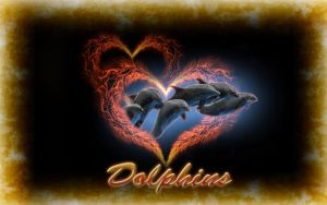 My Dolphins Fantasy by michello1976
