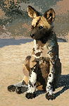 Pixel Project:African Wild Dog by ClemiKinkajou