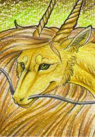.: Golden one -ACEO :. by Shien-Ra