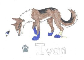 Simple Ivan Ref by AmiliaLongTail