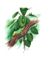 Day gecko by Sabre-Art
