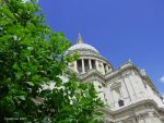 St Paul's Cathedral by cyanthree