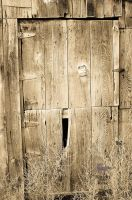 Ole Shed Door by Samtian