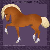 Nordanner Winter Import 746 by DemiWolfe