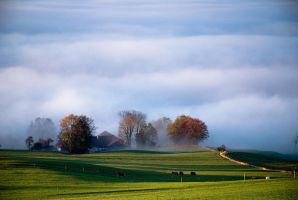Bavarian morning III by mutrus