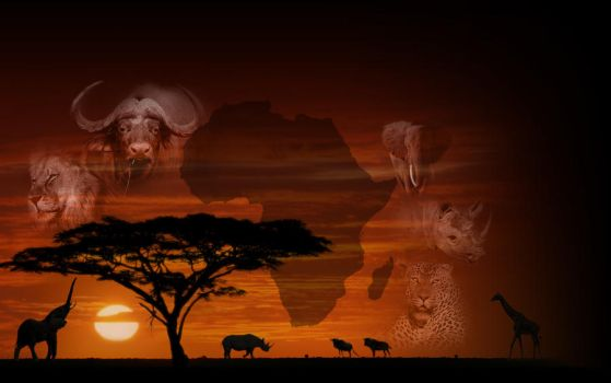 Africa Wallpaper by RidderCoenraad