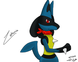 The Leader of the Team by Zocario