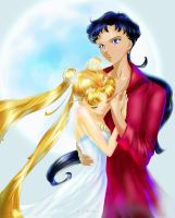 Usagi and Seiya by O-l-i-v-i