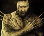 The volverine - Hugh Jackman by BeliyLis
