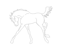 Foal lineart by SaddlePatch