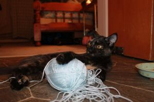 This is MY yarn by Lady-Lilith0666