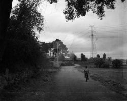 Lonely Road ' ' by CrisRaquel