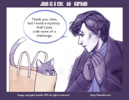 John is a Cat - Paper Bag by karadin