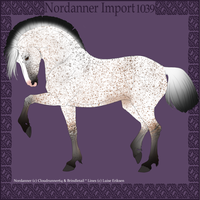 1039 Group Horse Import by Cloudrunner64