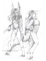 Latin Dance Costumes by furry-jackal