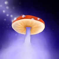 The magic mushroom by expectatinqs