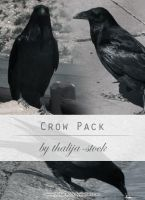 pack - 003 Crows by thalija-STOCK