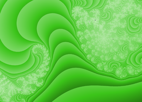 cabbage by Patterns-stock