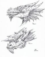 Dragons by anna-g