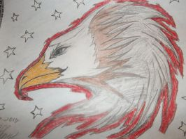 Eagle by Linked-Memories-21