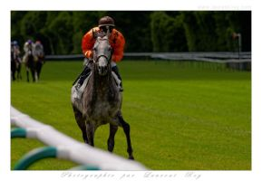 Horse Race - 011 by laurentroy