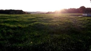 Field and sunset 1 by BMFMhero1991
