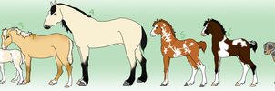 Happy BDay Adopts by EquusEquidae