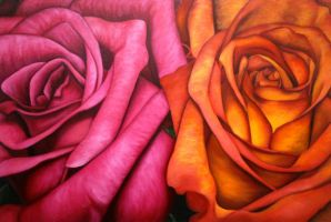 Orange and Pink by christeldl