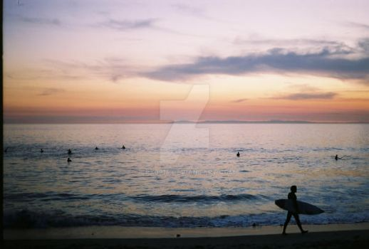 surf till sunset by epx9914
