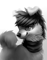 It Would Be Nice, To Start Over Again. (GRAYSCALE) by Smushey