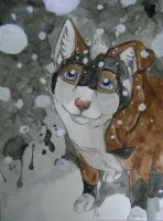 Snow falling by HowlingWolfSong