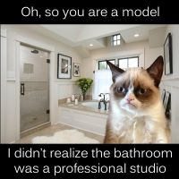 Grumpy cat gives you a grumpy model critique by kevingreggain