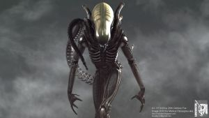 Giger ALIEN model shot I by locusta