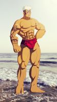 + Scar at the beach + FMA by leomon32