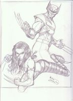 X-23 and Wolverine sketch by MikeVanOrden