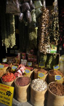 Spice in Istanbul by euancraine