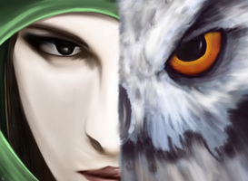 Eye for an Owl v2.0 by SnToter