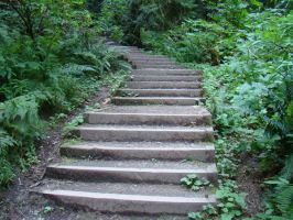 The Forest Stairs 5 by Talc-AlysStock