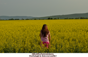 Miha3lla model in yellow flower field  (1) by Miha3lla