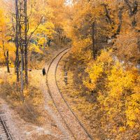 Way through autumn by Igor-Demidov