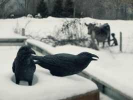 Crows by KBeezie