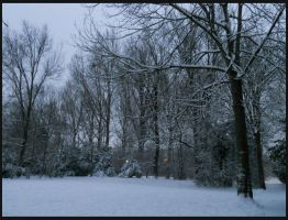 Chronicles Of Narnia by Preettisen