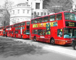 London Buses by lovestoned786